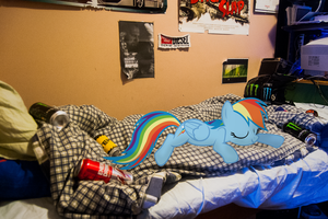 Dash passed out | Pony IRL by arkkukakku112
