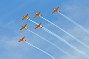 Lima Lima in Formation II by champion-ofThe-light