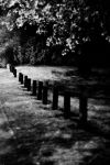 Posts at Night by Nocturnatum