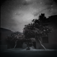 Endless Night by intao