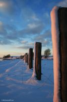 Winter - Piles in the Snow by D-BH
