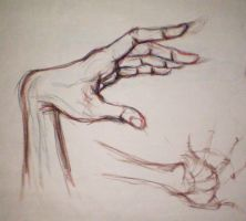 Hand Study by Pomegranate-Pen