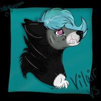 :Vilair: by LadyMidnight-gem