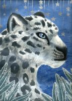 Snow Leopard, Sage, and Stars by Oreramar