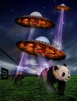 Skipies and the Pandas of War by Saxon-wolf23