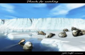 20131224 ThanksForWatching by vuemoments