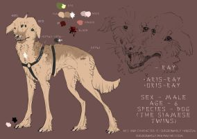 -Ray referense sheet by SurgeonWolf