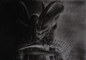 Giger's Alien by astrogoth13