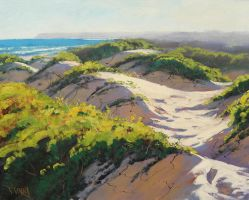 Light Across the Dunes by artsaus