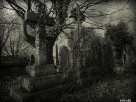 Lets Go To The Cemetery Again by Estruda