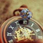 tick tock forget me not. by simoendli