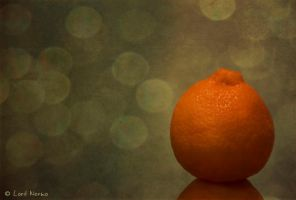 My Orange Portrait by uae4u