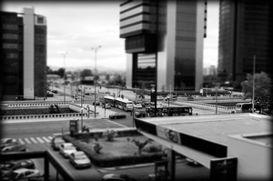 BW Tilt-shift by Carlosf93