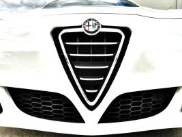 Alfa Romeo Front Grill by ryn004