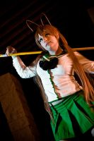 Highschool of the Dead :: 2 by WindoftheStars