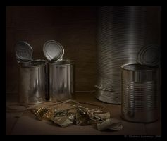 Tin by Lestrovoy