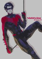 nightwing by link-012