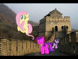 Ponies on the Great Wall by Paris7500