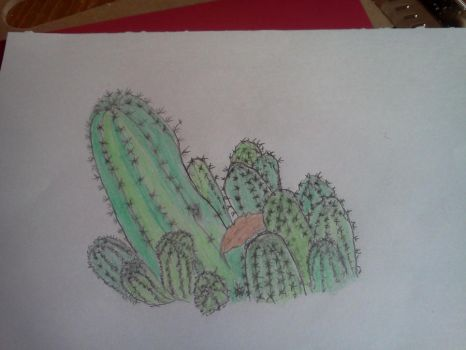 Cactus by finalsight618