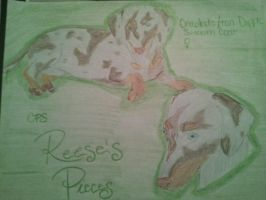 Cps Reeses Pieces by ArsenicLaced-Estate