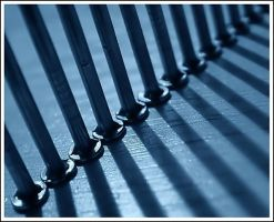 Behind bars by IvanAntolic