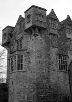 Donegal Castle by Cybopath