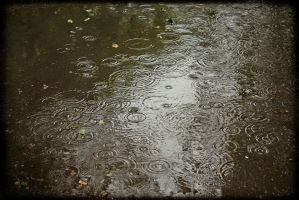 the rain in the puddles by weryvall