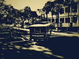 Charleston_Wallpaper by cougarbandit
