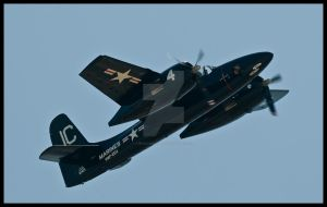 Tigercat II by AirshowDave