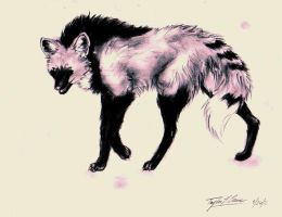 Dae : maned wolf sketch by TheRockyCrowe