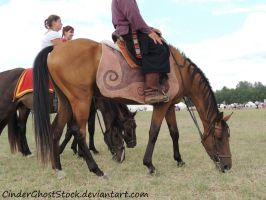Hungarian Festival Stock 116 by CinderGhostStock