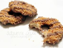 Girl Scout Cookies by 1AdrienneRose