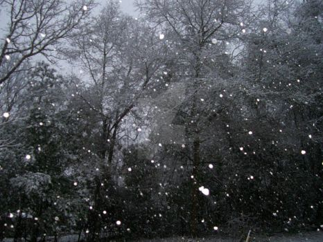 Snowfall Photo 02 by Guardian-of-Worlds