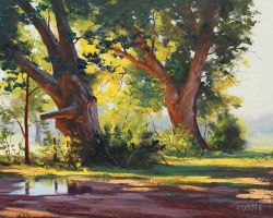 Tumut trees by artsaus