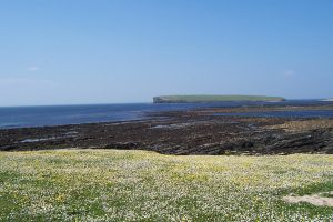Brough of Birsay, Orkney by SheepSlave