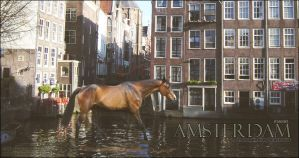 Amsterdam by PS-Graphics