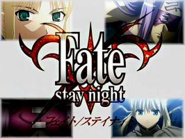 Fate Stay Night Wall by Lotus-Mizuno