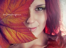 Autumn colors by moijra