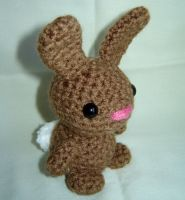 Small Cottontail Bunny by Ginger-PolitiCat