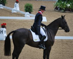 Dressage 37 by equinestudios