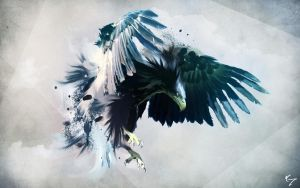 Northern Eagle by NYClaudioTesta