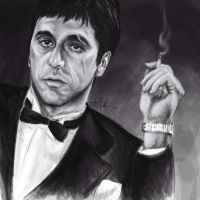 Scarface. by TheTanyaDoll