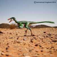 Troodon by haghani