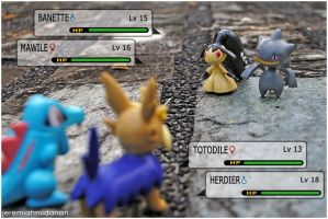 Pokemon Battle 1 by MayaIdanan