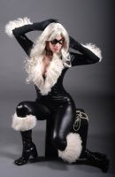 Black Cat 2 by MLeighS