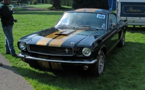 Shelby GT350H by smevcars