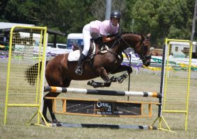 STOCK Showjumping 439 by aussiegal7