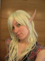 Blood Elf by Temari-Cosplay