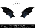 Painted bat wings by TinaLouiseUk