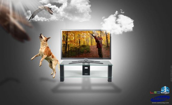 Samsung 3DLED TV Advertisement by georgfx